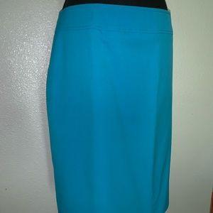 Lined dress-skirt